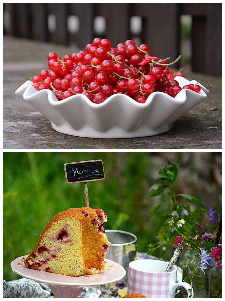 Gugelhupf Johannisbeer Kuchen