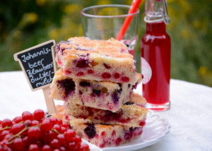 Blechkuchen Sommerkuchen
