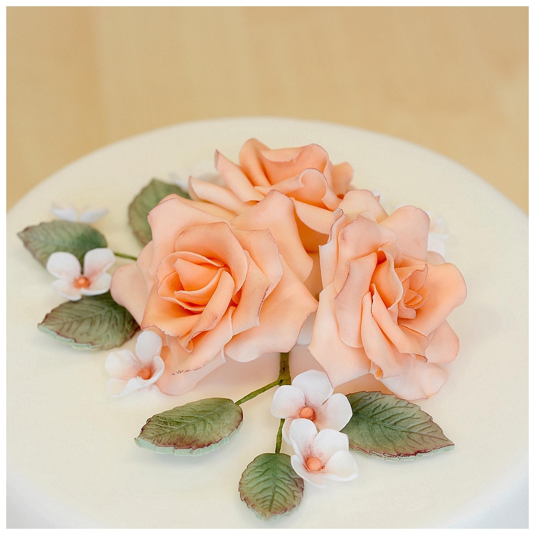 Torte Rosen Rosenblüte