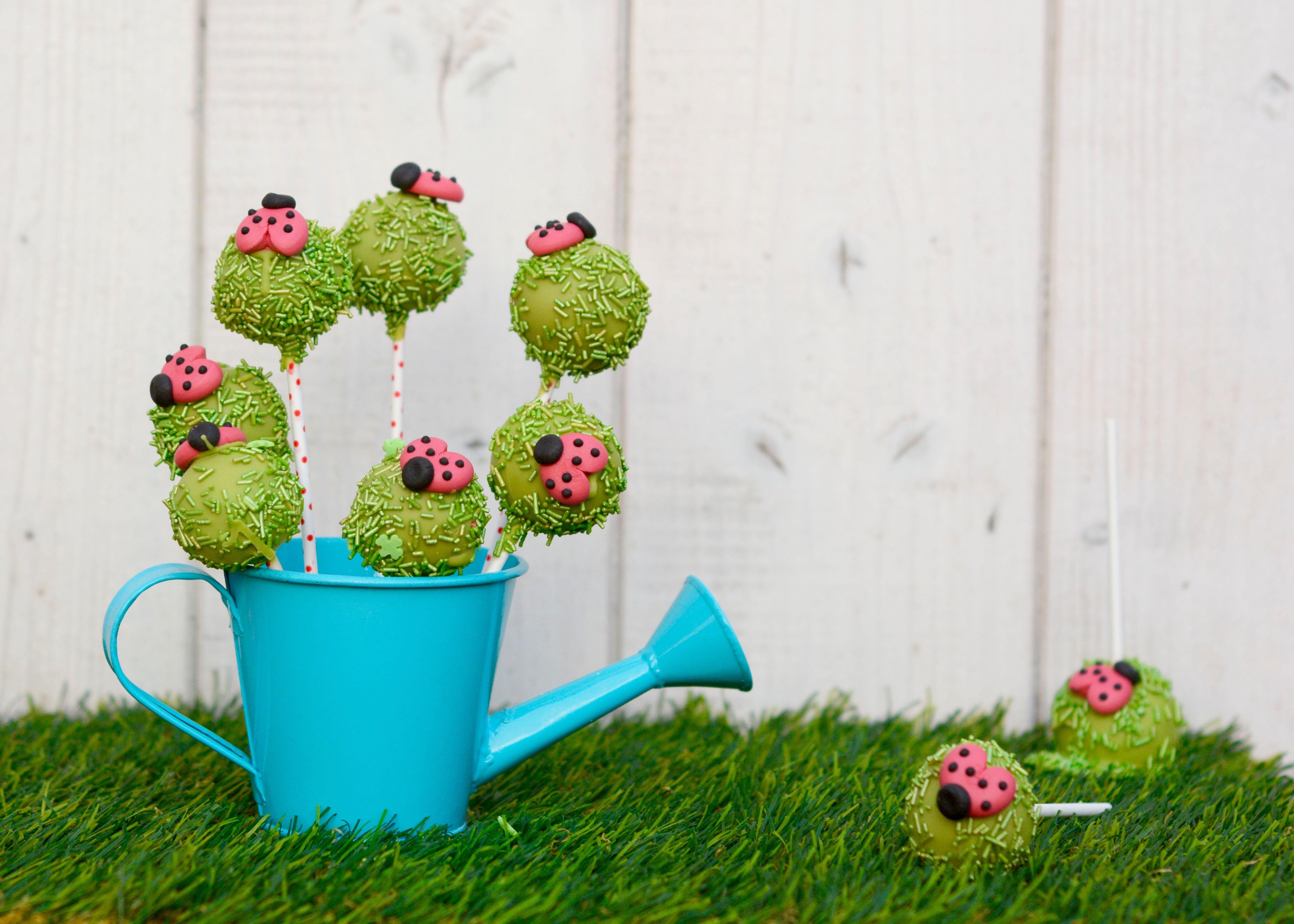 Lustige Wiesen-Marienkäfer-Cakepops
