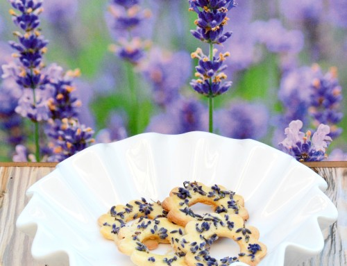 Schmecken nach Urlaub und Sommer: Lavendel-Kekse