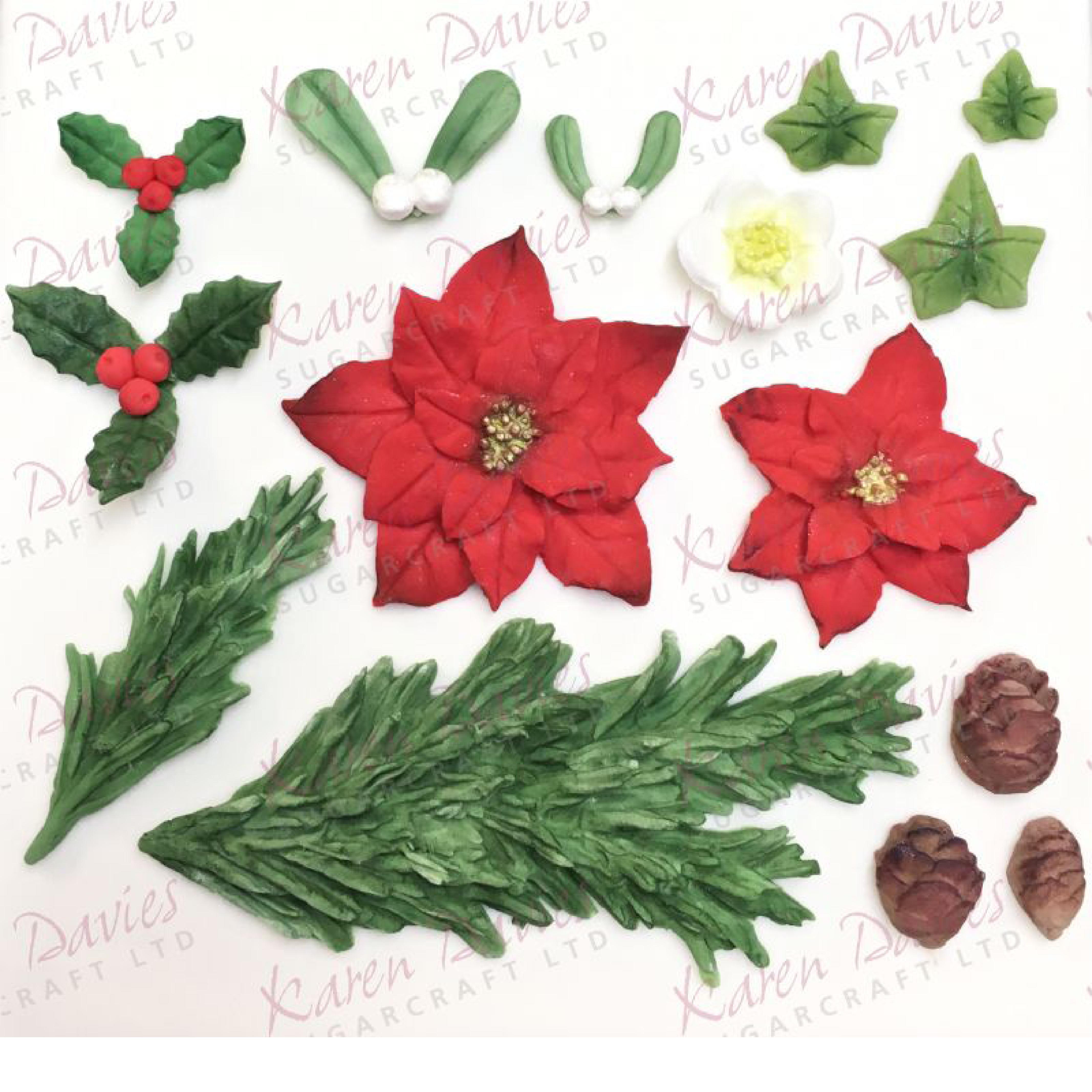 Weihnachtsstern Für Tannenbaum.Mould Tannenbaum Und Weihnachtsstern Von Karen Davies