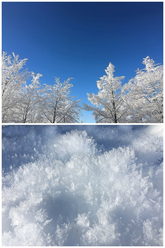 Schnee Schwarzwald