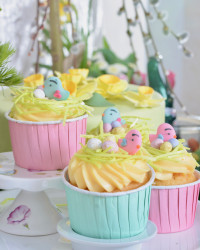 Vögel Vogelnest Oster Cupcakes Liebesvögel