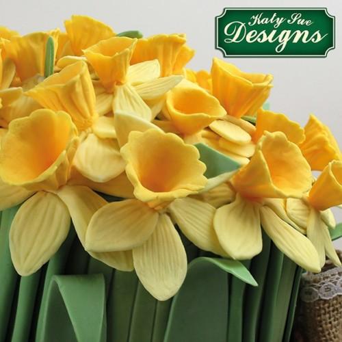Oaterglocken Daffodils Narzisse